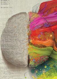 multipotenzialità